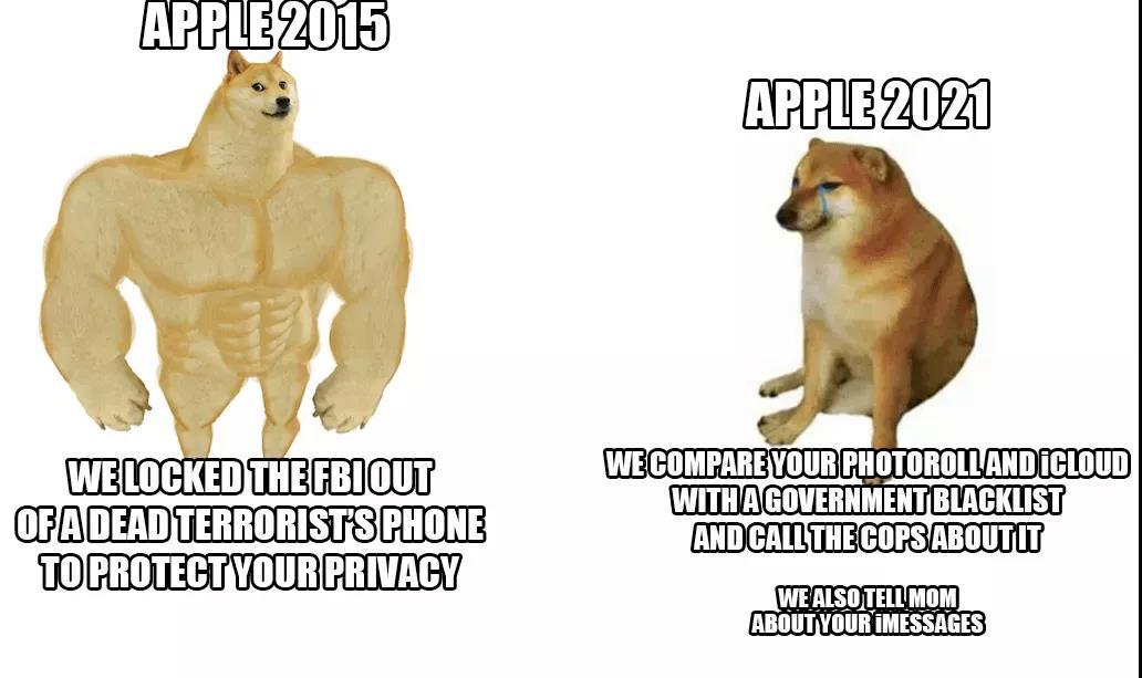 我们不用「元宇宙」这个词!苹果CEO库克:我们称其为AR